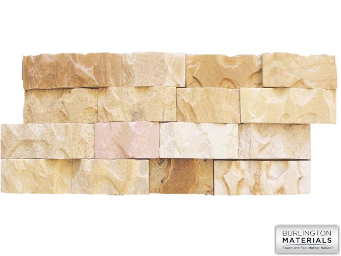 Fossil Rustin panel